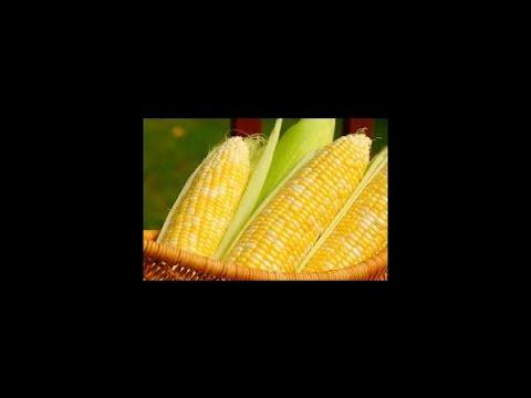 Aloe für Diabetes