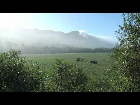 American AgCredit GENERATIONS: Branstetter Ranch