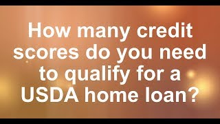 What credit scores qualify for a USDA home loan?
