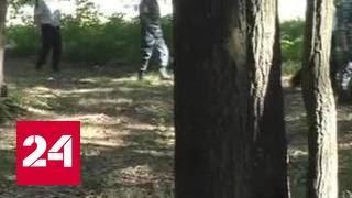 В лесу под Орлом нашли повешенными мать и полугодовалого ребенка