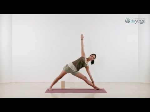 Айенгар-йога. Курс для начинающих. 