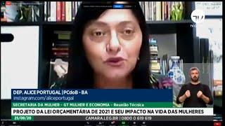 Secretaria da Mulher - Projeto da Lei Orçamentária de 2021 e seu impacto na vida das mulheres - 25/09/2020 15:00