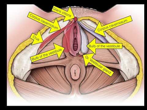 Problemă de erecție după înșelăciune