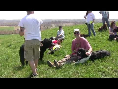 Tails on Trails – Dogs Down at the Farm 2009