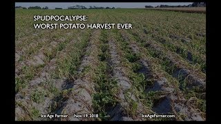 Spudpocalypse: Worst Harvest Ever * Russia Moves Farms Indoors for Grand Solar Minimum