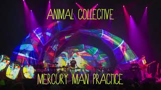 Animal Collective - Mercury Man (Practice)