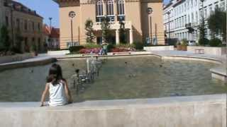 preview picture of video 'Sopron. Petöfi tér.Zenélö szökökut..'