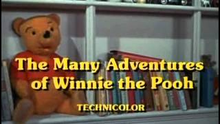 The Many Adventures of Winnie the Pooh - 05 - Little Black Rain Cloud