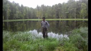 рыбалка на оби в соколовке