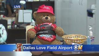 Update: Lost Teddy Bear Found At Dallas Love Field