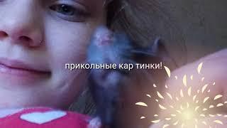 Прикольные картинки!))