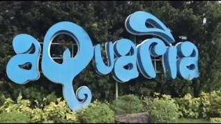 Aquaria Water Park, Calatagan, Batangas (Short Slideshow Clip)