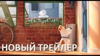 ТАЙНАЯ ЖИЗНЬ ДОМАШНИХ ЖИВОТНЫХ (2016). Новый ролик.