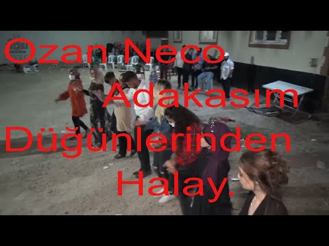 Ozan Neco ile Adakasım düğünlerinden Halay.