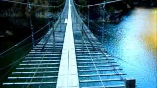 犬と旅行ペットと観光静岡寸又峡「夢の吊橋」