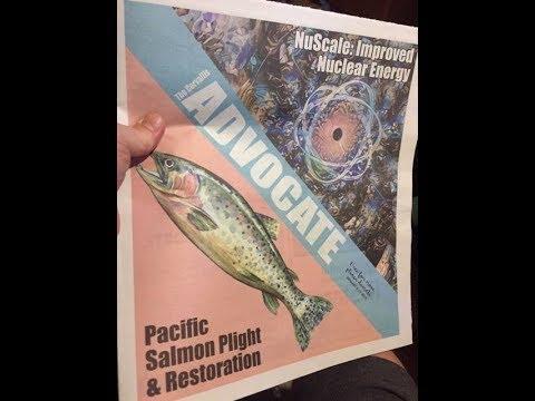 The Fukushima Disaster Radiating Your DNA (w/ Kevin Kamps)