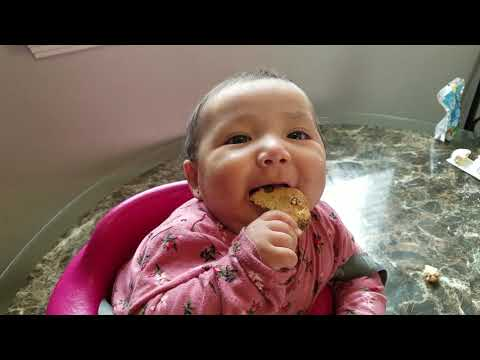 Alexzandria's first chocolate chip cookie| Play Time
