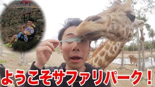 動物サファリパークの中を空中散歩できる場所が怖すぎる!!