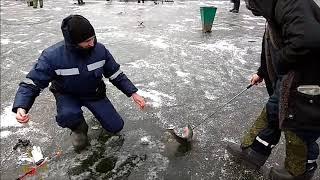 Зимняя рыбалка лосиный остров