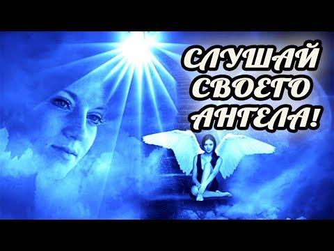 Знаки от вашего Ангела хранителя. Как ангелы предупреждают об опасности  Подсказки и послания ангело