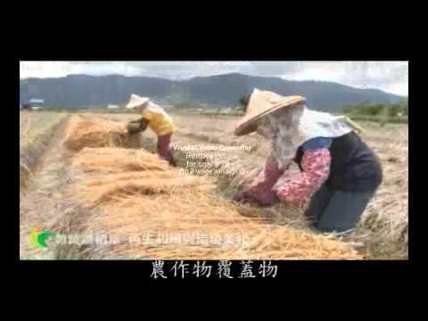 勿焚燒稻草(臺語版)