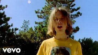 <b>Beck</b>  Loser