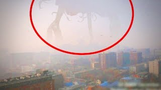 10 Mysterious Giant Creatures Caught on Tape