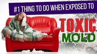 #1 Thing to do when Exposed to Toxic Mold - Video Youtube