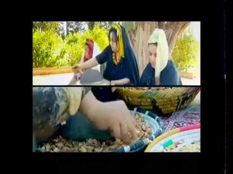 Egipt din varicose ulei egipt