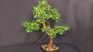 How to make an artificial tree. Bonsai own hands