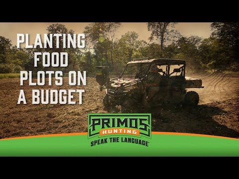 Food Plots on a Budget video thumbnail