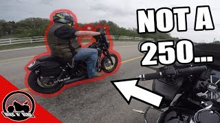Harley Davidson Dyna Street Bob Review - 2,000 miles later - Free