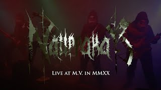 Video Live at M.V. in MMXX
