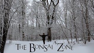 Health, Happiness And Bonsai