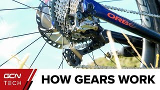 How Do Bike Gears Work? | Bicycle Gears Explained