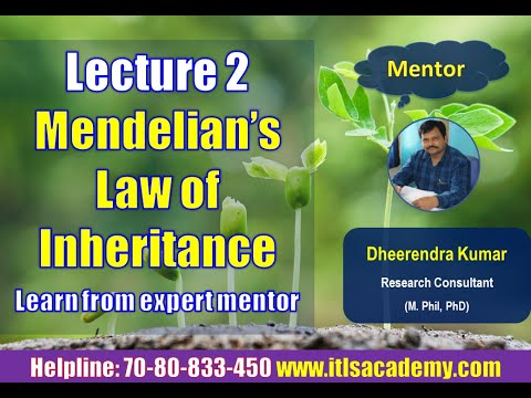 Mendelian Law of inheritance