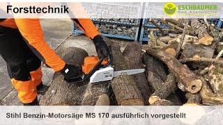 Stihl Benzin-Motorsäge MS 170 ausführlich vorgestellt und im Einsatz