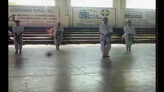 preview picture of video '2º Seminario Técnico de Karate Do - D.K.U - Bella Unión - Artigas'