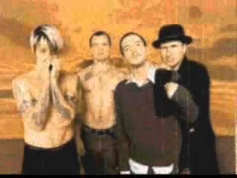 Red Hot Chili Peppers - Can't Stop </Body></Html> video