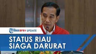 Jokowi Gelar Rapat Terbatas Tanggapi Kabut Asap Tebal: Riau dalam Status Siaga Darurat