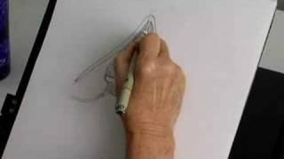 Betty Dodson dibuja el clítoris.