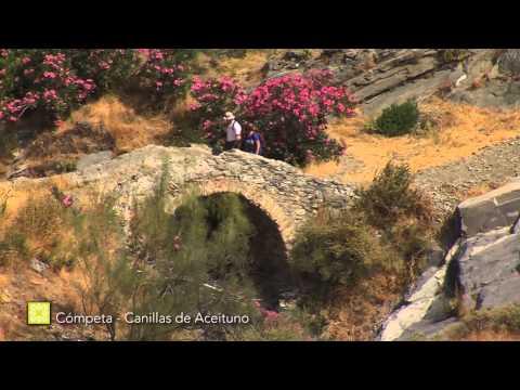 Grand Sentier de Málaga. Étape 7: Cómpeta - Canillas de Aceituno ( français )