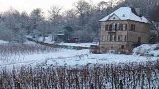 preview picture of video 'Pfälzer Weinsteig Wachtenburg - Odinstal'