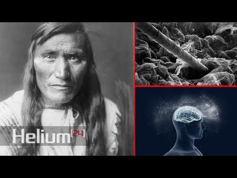 I capelli sono un'estensione del sistema nervoso: perché gli indiani mantengono i capelli lunghi