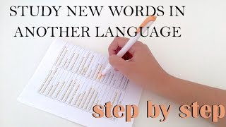 HOW TO LEARN NEW VOCABULARY: step by step