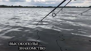 Пруды для рыбалки в липецкой области высокополье