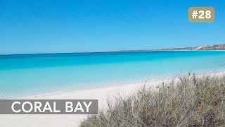 preview picture of video 'S1 AUSTRALIE - Episode 25  : Coral Bay, Ningaloo Reef'