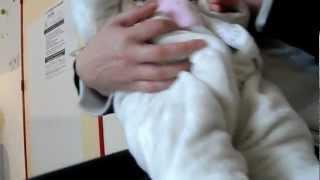 preview picture of video 'SAM_7348.MP4 Nicole-Helene z mamą i tatą w Lagny Sur Marne'