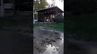 Video Continua recto - Bez domova