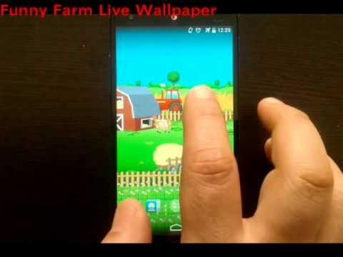 Video of Funny Farm